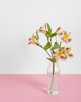 Bloesem bloemen in vaas op tafel