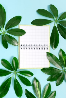 Bloginhoud over natuurthema's maken, milieuverlies voorkomen, hernieuwbare materialen weergeven, hernieuwbare producten maken, organische materialen, tuinontwerpplanning