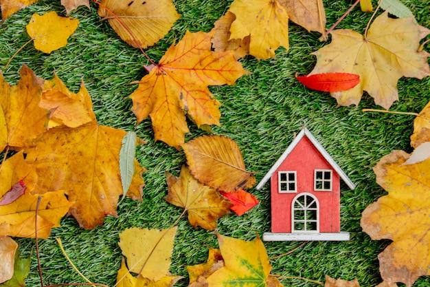 Blokhuis en bladeren rond op groen gazon.