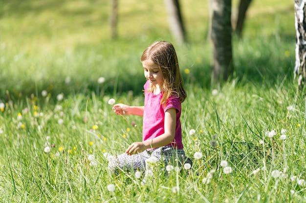 Blond meisje bloemen plukken paardebloem waait zittend op het groene gras in het veld