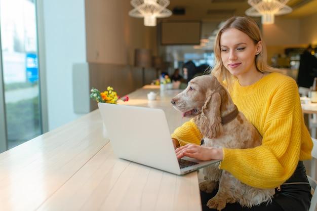 Blonde freelancer blogger in geel sweatshirt met laptop in co-werkruimte en houdt haar oude cocker spaniel hond op haar knieën