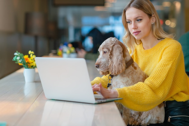 Blonde freelancer blogger in gele sweater met behulp van laptop in co-werkruimte en met haar cocker spaniel hond op haar knieën.