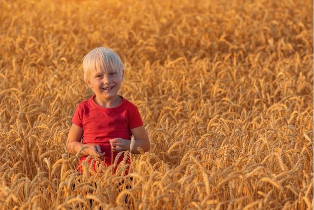 Blonde jongen die zich op gebied van rijpe tarwe bevindt en glimlacht.