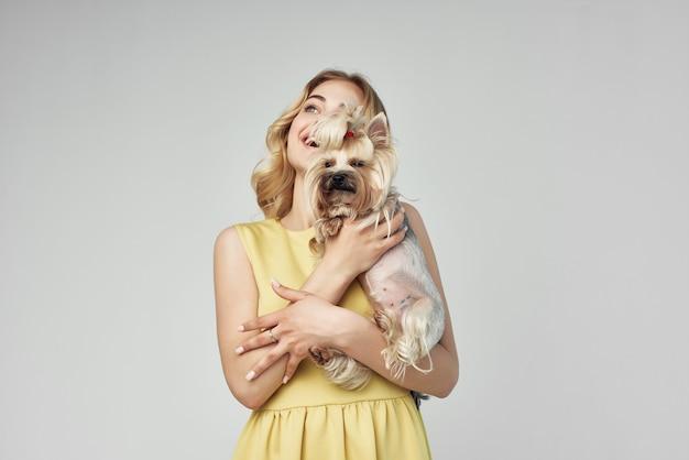 Blonde modieuze rasechte hond lichte achtergrond studio