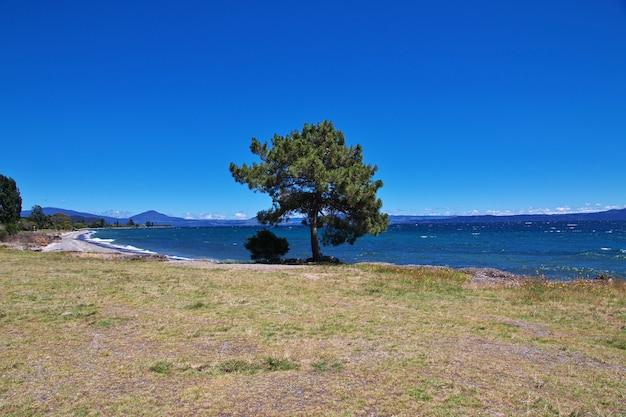 Blue lake taupo in nieuw-zeeland