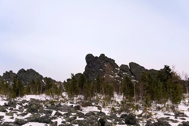 Bochtig dwergbos aan de voet van granietrotsen in de hooglanden in de winter