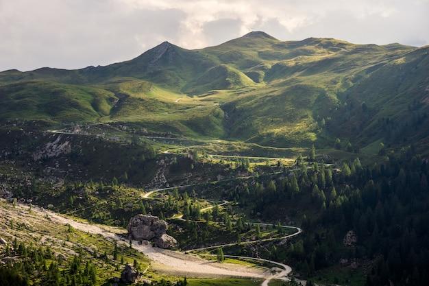 Bochtige weg naar de berg, omringd door bomen overdag