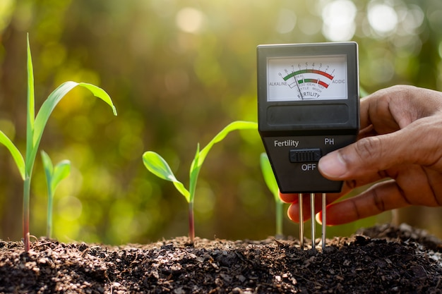 Bodemmeter wordt gebruikt op leem voor planten, meet de zuurgraad van de bodem.
