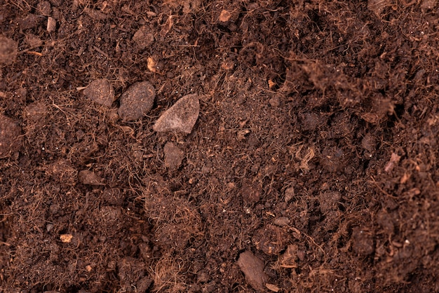 Bodemtextuur achtergrond. bovenaanzicht vruchtbare grond voor het kweken van planten en bloemen.