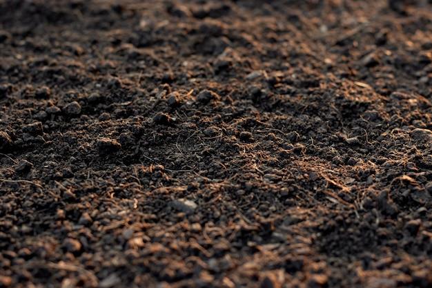 Bodemtextuur achtergrond, vruchtbare grond voor opplant.