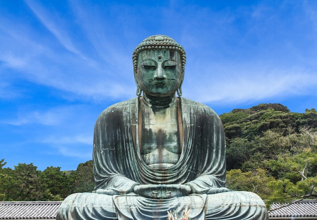Boeddha daibutsu
