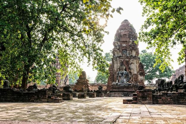 Boeddhabeeld zitpositie aan de voorkant van de pagode onder zonlicht omringd door bomen en oude ruïnes van de tempel wat phra mahathat in phra nakhon si ayutthaya historical park, thailand