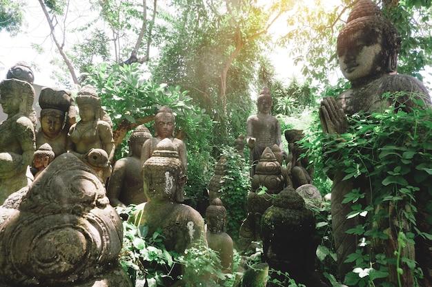 Boeddhabeelden verborgen in bladeren van tropische jungle met mist in de ochtend