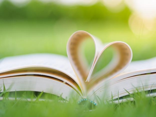 Boek op lijst in tuin met hoogste geopende één en pagina's die hartvorm vormen