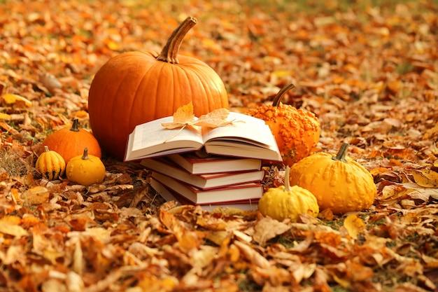 Boeken lezen over de herfst