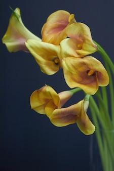 Boeket geel-oranje calla lelies in een glazen vaas