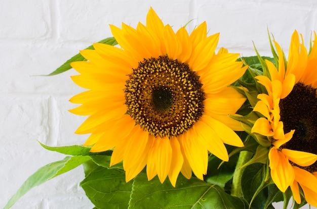 Boeket gele zonnebloemen tegen een witte bakstenen muur.