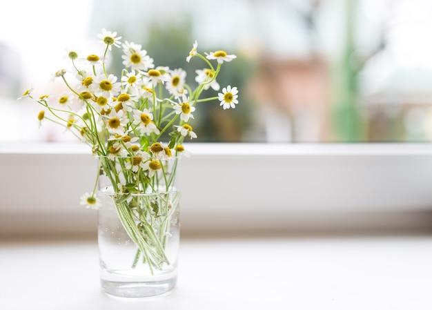 Boeket kamille bloemen op de vensterbank.