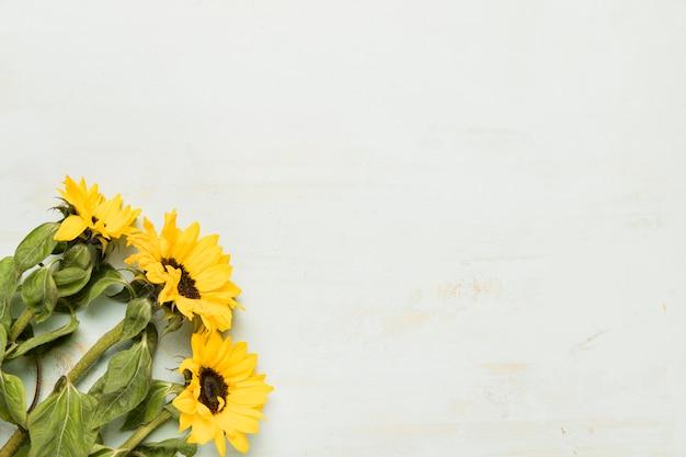 Boeket met zonnebloemen
