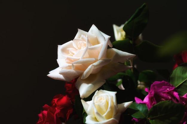 Boeket rozen op donkere achtergrond