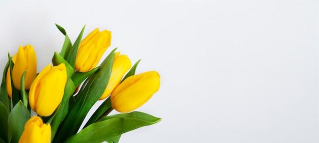 Boeket van gele tulpen op witte bakground