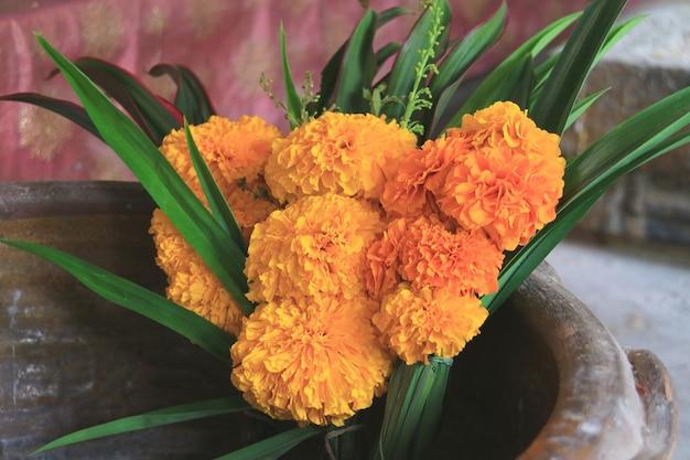 Boeket van goudsbloembloemen voor het aanbieden in boeddhistische tempel in thailand