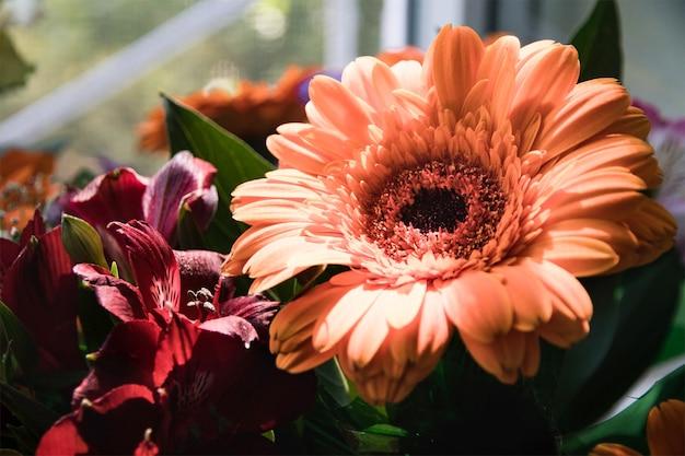 Boeket van grote oranje gerbera's en bordeauxrode alstroemeria's in de ochtendzon