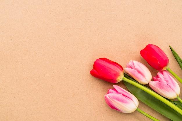 Boeket van heldere tulpen op groene stengels