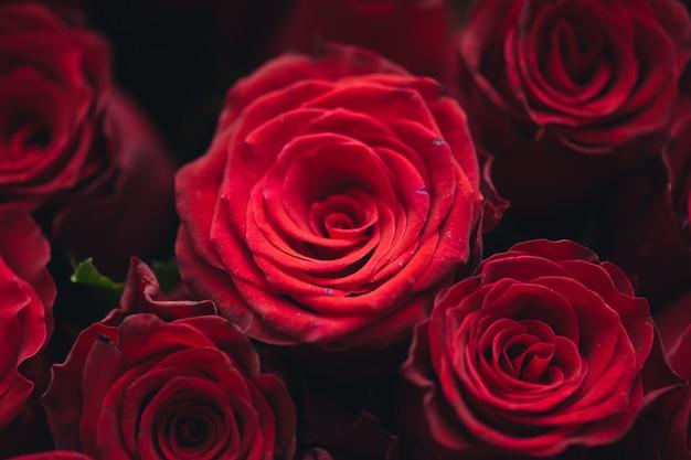 Boeket van honderd rode rozen viering van verloving of huwelijk