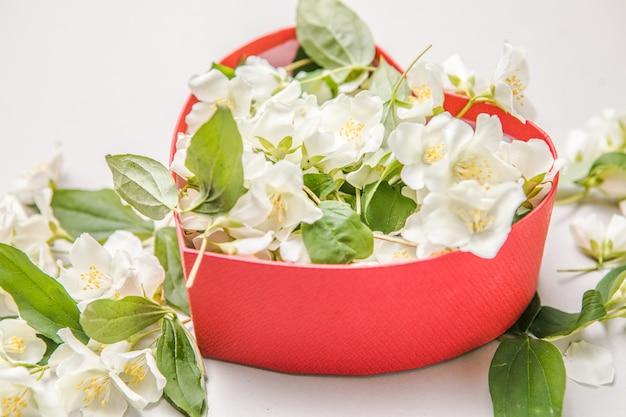 Boeket van jasmijn in geschenkdoos. valentijnsdag. bovenaanzicht met kopie ruimte voor een tekst. bloemen gefeliciteerd decoratief frame.