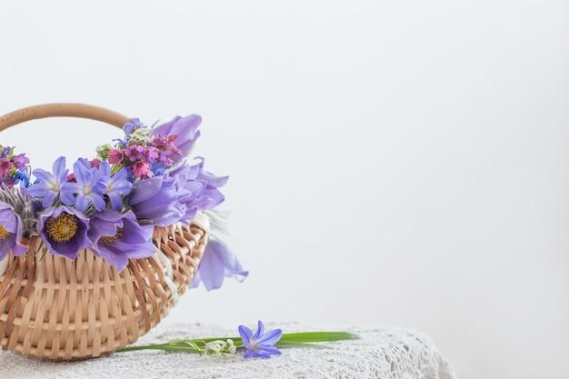 Boeket van lente paarse bloemen op witte achtergrond