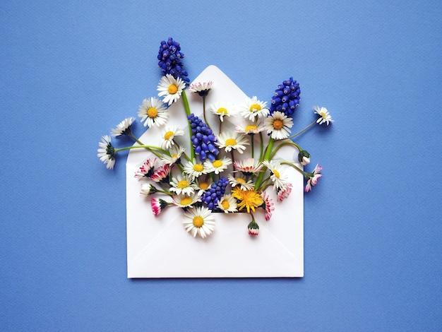 Boeket van lentebloemen chamomiles en druivenhyacint in een envelop