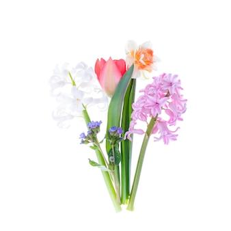 Boeket van lentetuin bloemen op witte muur.