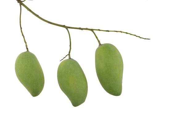 Boeket van mango die op witte achtergrond wordt geïsoleerd. uitknippad.