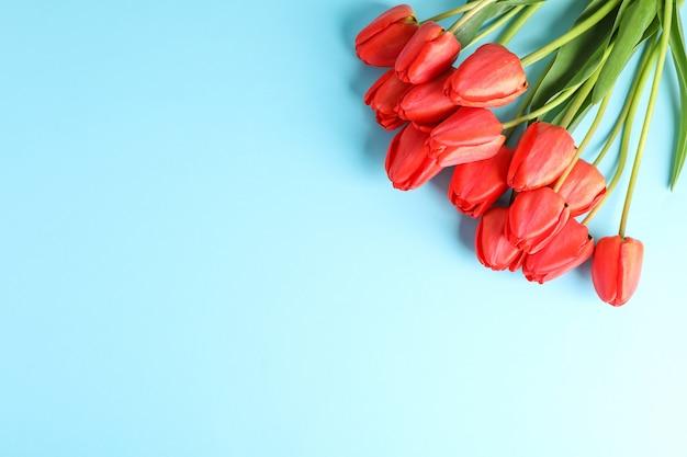 Boeket van mooie rode tulpen met groene bladeren op kleur