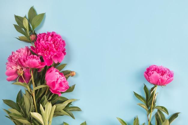 Boeket van mooie roze pioenbloem en wit frame voor tekst op pittig pastelblauw. kopieer ruimte. bovenaanzicht plat leggen.
