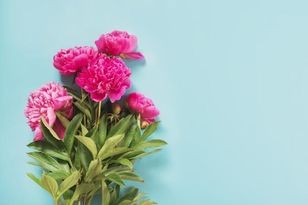 Boeket van mooie roze pioenbloemen als kader op punchy pastelkleurblauw.