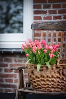Boeket van mooie roze tulpen. amsterdam