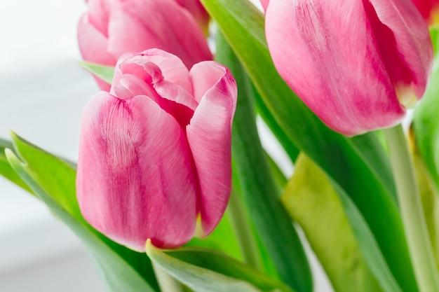 Boeket van mooie roze tulpen tegen vaag
