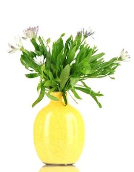 Boeket van mooie zomerbloemen in kleurvaas, op wit