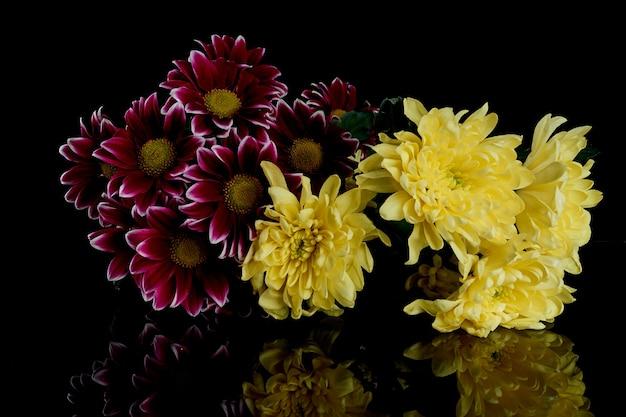 Boeket van paarse en gele chrysanten op een zwarte achtergrond