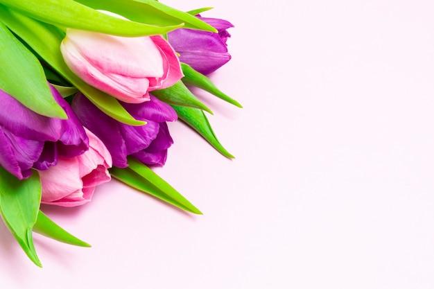 Boeket van paarse en roze tulpen op een lichtroze achtergrond