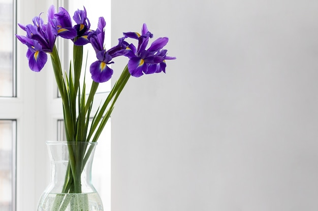 Boeket van paarse irissen in een glazen vaas bij het raam met kopie ruimte