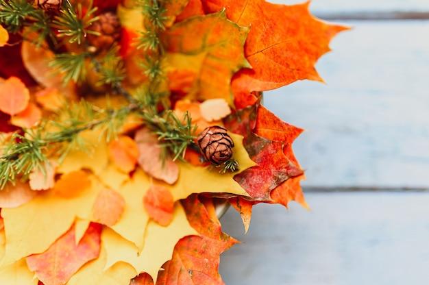 Boeket van rode en gele droge herfst esdoorn bladeren op elkaar gestapeld, bovenop zijn esdoorn zaden, en een takje lariks met kegels, op een blauwe houten achtergrond. herfstconcept, plat gelegd