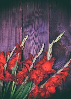 Boeket van rode gladiolen