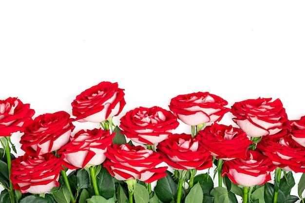 Boeket van rode roos geïsoleerd op witte kleur