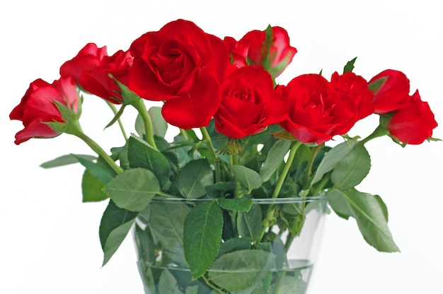 Boeket van rode rozen in glasvaas op witte achtergrond