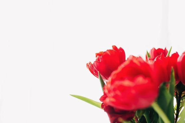 Boeket van rode tulp bloemen geïsoleerd op wit