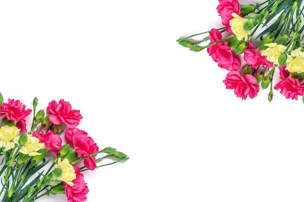 Boeket van roze anjer bloem geïsoleerd op een witte achtergrond bovenaanzicht plat lag kerstkaart 8 maart