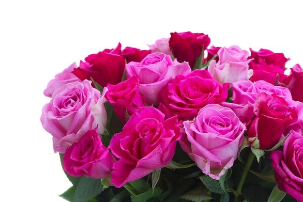 Boeket van roze en magenta rozenclose-up die op witte achtergrond wordt geïsoleerd